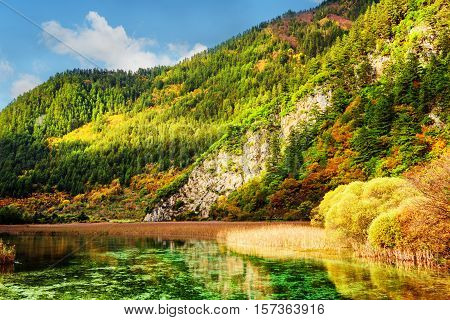 River With Crystal Clear Water Among Wooded Mountains And Rocks