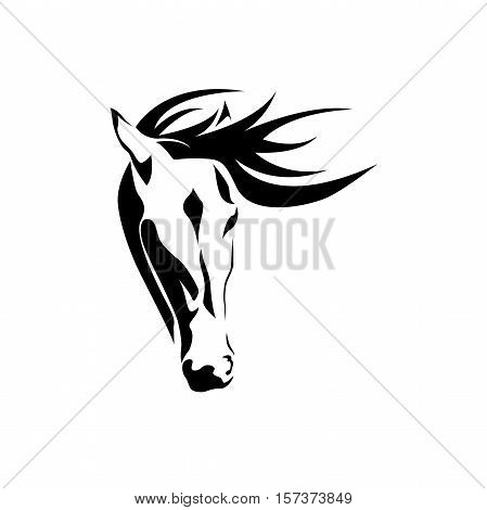 Vector abstract portrait of a horse on white