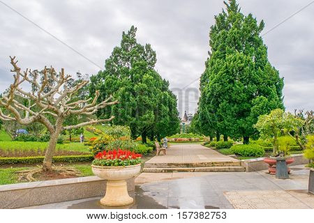garden, flower, beautiful, flowerbed, nature, dalat, holiday, spring, park, beauty, vietnam, summer, natural, floral, asian, blossom, asia, bloom, springtime, design, lifestyle, landscape, outdoors, grass, vacation, ornamental, peaceful, trees, relaxing,