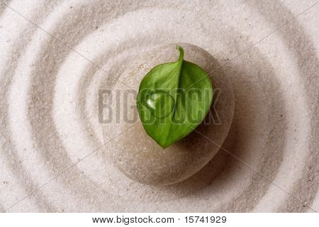 piedra del jardín Zen
