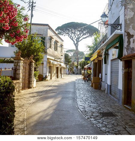 Street on Capri island in Campania, Italy