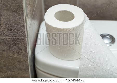 Roll Of Toilet Paper Stands On The Reservoir In Restroom