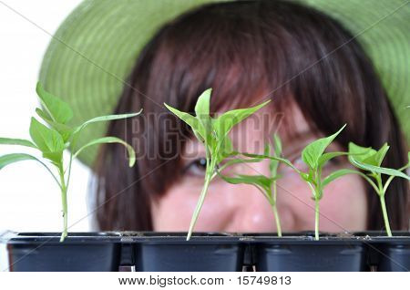 Caring Gardener Looking After Young Plants Isolated