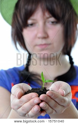 Gardener With Plant In Hands Isolated