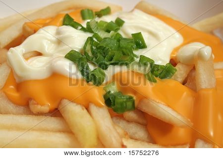 Melted cheese fries topped off with mayonaise and spring onions.