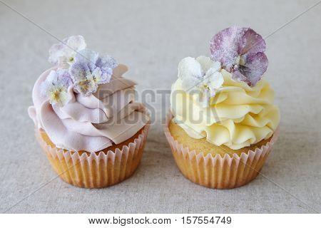 Purple and yellow cupcakes with sugared edible flowers on linen background
