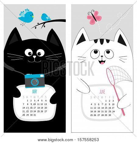 Cat calendar 2017. Cute funny cartoon character set. May June spring summer month. Photo camera blue bird branch pink butterfly insect net. Dash line track. Flat design. Gray background. Vector