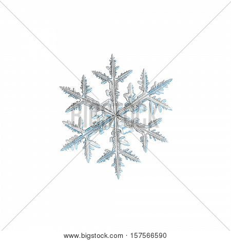 Snowflake isolated on white background. This is macro photo of real snow crystal: medium size stellar dendrite with traditional shape and six ornate arms with many side branches and icy leaves.