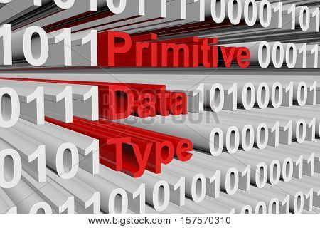 Primitive data type as binary code 3D illustration