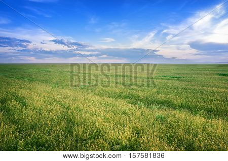Astrakhan steppe under beautiful sky shoot in May. Spring is beautiful time. Hills are green and covered by emerald grass. Panorama of steppe near salt lake Baskunchak Russia