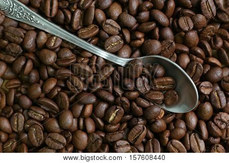 roasted coffee beans and a silver spoon closeup