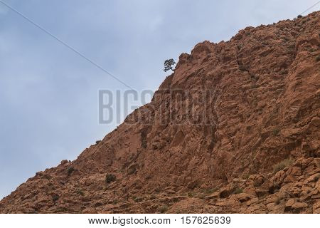 Structure of a hill part of Atlas Mountains in Morocco. Tree on the edge of the hill. Cloudy rainy sky.