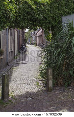 Old pavement on the street in the day in the center of Haarlem in the Netherlands