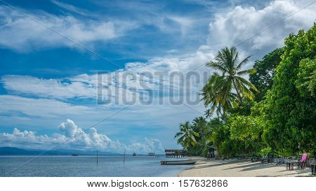 Coconat Palm on Kri Island, Homestay and Pier in Background. Raja Ampat, Indonesia, West Papua.