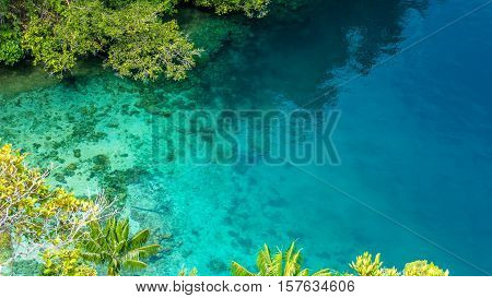 Clear Blue Water and Coral in Mangrove near Warikaf Homestay, Kabui Bay, Passage. Gam Island, West Papuan, Raja Ampat