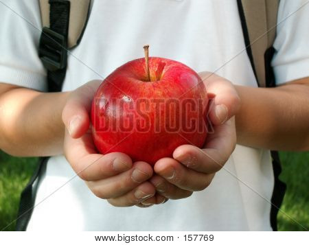 Apple For My Teacher