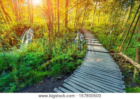 Wooden tourist path in Plitvice lakes national park Croatia Europe. Colorful summser sunrise.