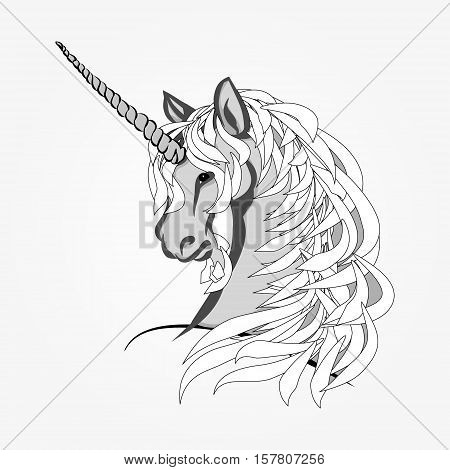 The head of a unicorn with a long mane. Vector illustration