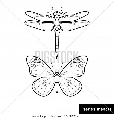 Set of vector images of butterflies and insects dragonflies isolated on a white background. The linear design.