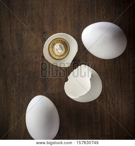 Ten rupee coin placed in a broken egg shell. 'Matured investment' - a creative concept.