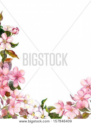 Floral retro background with blossom. White and pink apple flowers. Vintage watercolour