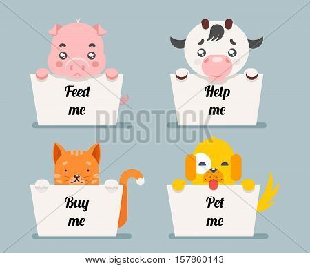 beggar animals help cat dog and pig cow cartoon flat design character vector illustration