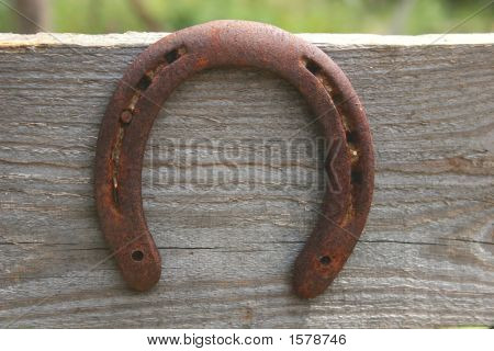 Horseshoe #2