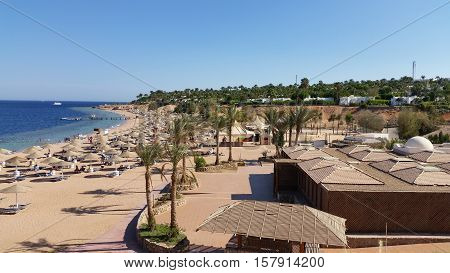Sun umbrellas and beach beds under the palm trees on tropical beach. Holiday in Egypt