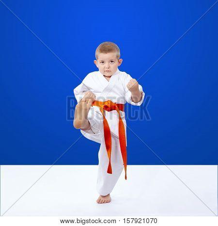 Karateka hits a kick on a blue background