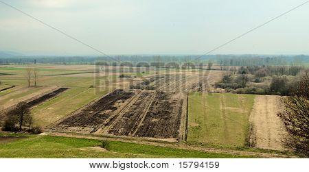 Early spring fields