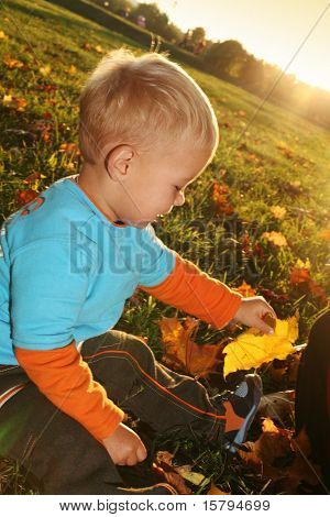 Little boy playing with yellow autumn leaves in the park
