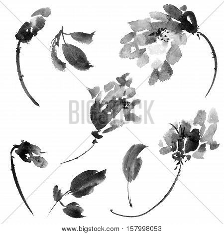 Plants with flowers and leaves. Ink painting in style gohua sumi-e u-sin. Oriental traditional painting.