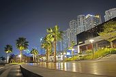 Постер, плакат: Promenade View In Dubai Marina At Night
