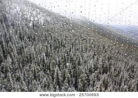 Waterdrop Window