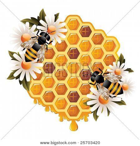 Floral Honey Concept