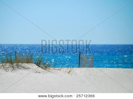 Sand Dune and Fence on beach