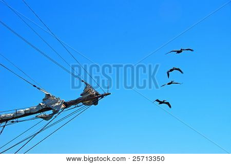 Sailing Ship and Flying Pelicans