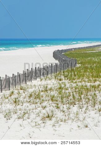 Sand Dune Fence and Grasses on Beach