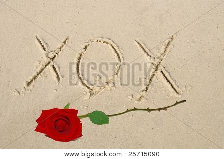 Romantic XOX Sand Writing and Red Rose