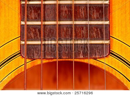 Guitar Body, Frets and Strings
