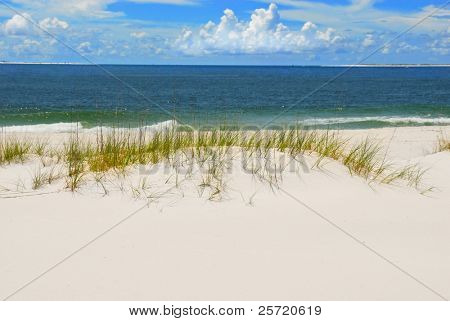 Beautiful white sand dune beach by ocean