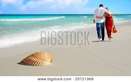 Pretty seashell on beach with romantic couple in distance