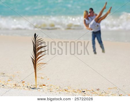 Bird feather stuck in sand by romantic beach couple