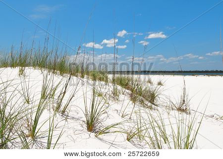 Beautiful sand dune in Florida panhandle