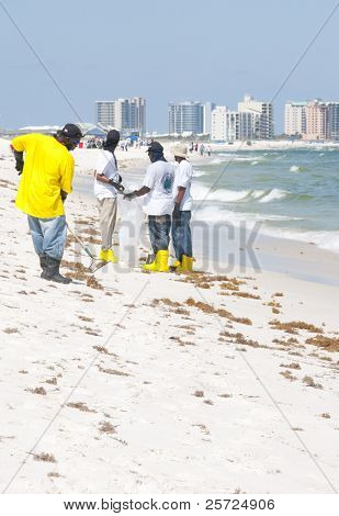 ORANGE BEACH, AL - JUNE 10: BP oil spill workers attempt to remove thick globs of oil from the seashore of Perdido Pass, AL on June 10, 2010 as oil washes ashore in the resort area.
