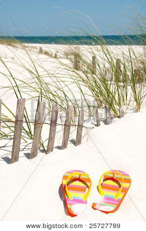 colorful flip flops on sand dune