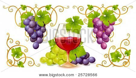 Grape elements, corners and wine glass