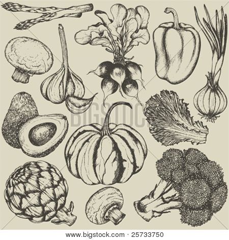 Hand-drawn set vegetables