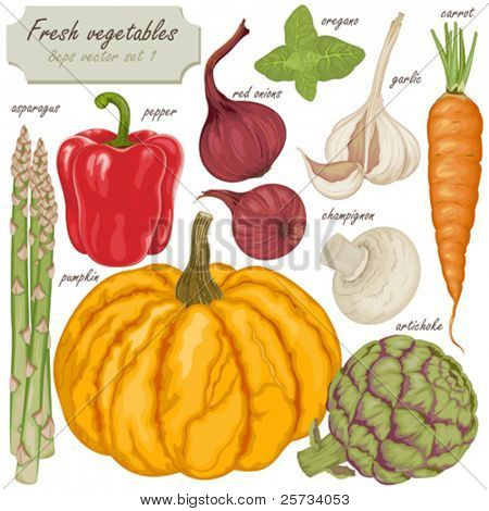 Fresh vector vegetables