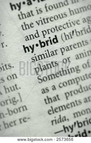 Dictionary Series - Environment: Hybrid